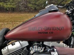 2009 Harley-Davidson Dyna
